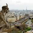 Notre Dame de Paris: Chimeras — Stock Photo #5638098
