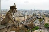 Notre Dame de Paris: Chimeras — Stock Photo