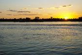 Řeka Zambezi při západu slunce — Stock fotografie