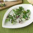 Stock Photo: Fresh winter savory