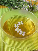 Herb tea with cuckoo flower — Stock Photo