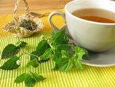 Tea with aztec sweet herb — Stock Photo