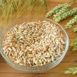 Cereal mixture and grain ears — Stock Photo
