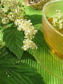 Tea with meadowsweet — Stock Photo