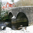 Bridge at Badgers Holt Dartmoor — Stock Photo