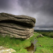 Stock Photo: Coombestone Tor