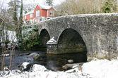 Bridge at Badgers Holt Dartmoor — Stock Photo
