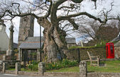 Meavy Church, Dartmoor, Devon, UK. — Stock Photo