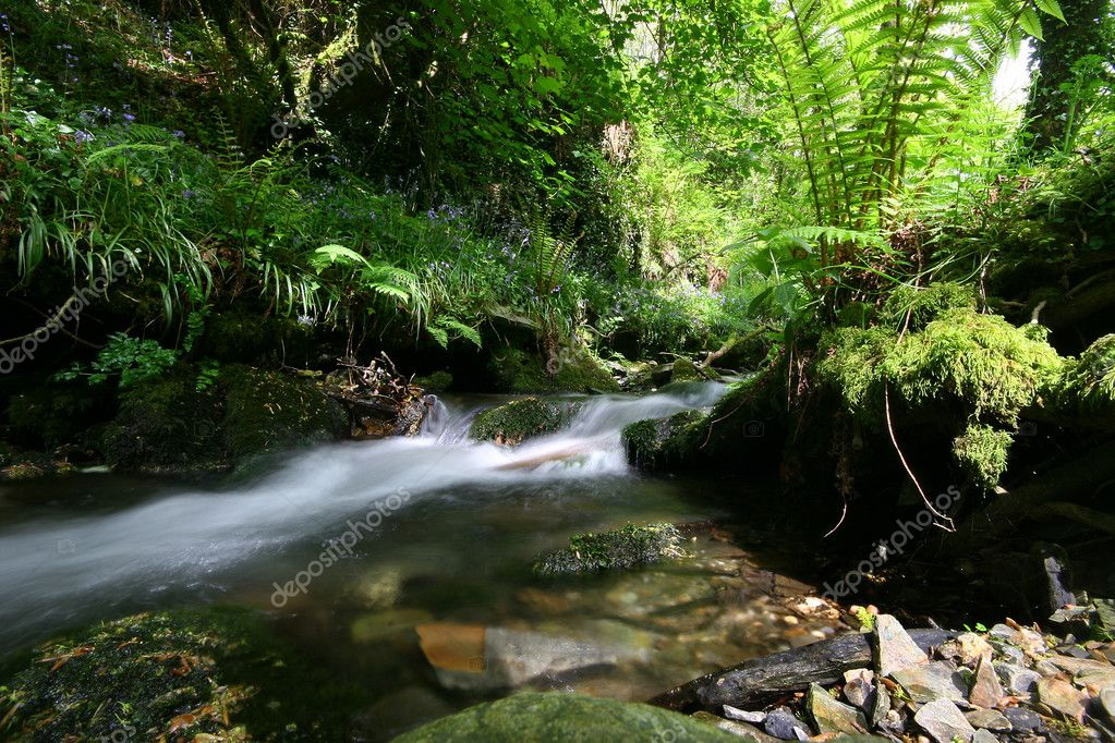 Located near Tintagel in North Cornwall, St Nectans Glen and Waterfall are regarded as one of the top spiritual sites in the UK — Stock Photo #5890139