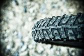 自行车轮胎 — 图库照片
