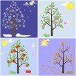 ストックベクタ: Trees in four seasons.