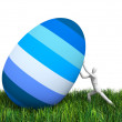 Man and Easter egg - 