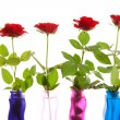 Four red roses in a row — Stock Photo