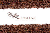 Coffee beans over white with text space — Stock Photo