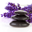 Stock Photo: Stacked black stepping stones and lavender flowers