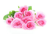 Pile of pink roses — Stockfoto