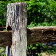 Old fence post in nature — Stock Photo