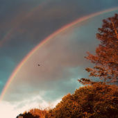 A double rainbow in the autumn sky — Stockfoto