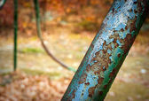 Part of an old rusted swingset — Stockfoto