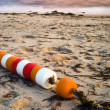 String of beach buoys — Stock Photo