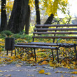 Autumn municipal park — Stock Photo