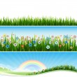 Stock Vector: Lawn and grass field