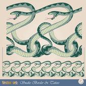 Snakes seamless pattern — Stock Vector