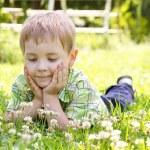 Little boy lying in clover flower field, hands under the cheeks — Stock Photo