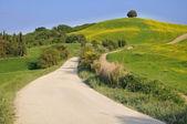 хилл сельской местности в тоскане — Стоковое фото
