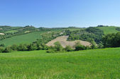 Hill countryside in the Crete Senesi region, Tuscany — Stock Photo