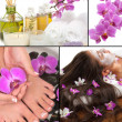 Spa collage — Stockfoto #5636869