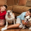 Children and Dogs — Stockfoto