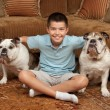 Boy and Dogs — Stock Photo