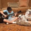 Dogs and Music — Stock Photo