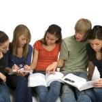 Study Group — Stock Photo