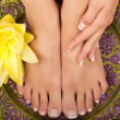 Pedicure and Manicure Spa - Foto de Stock  