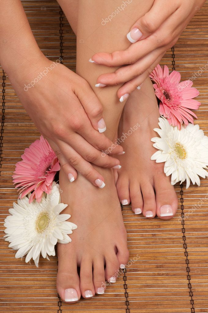 Pedicure and manicure spa with beautiful flowers  Stock Photo #6528466