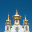 Fragment Of Great Peterhof Palace — Stock Photo