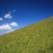 Stock Photo: Meadow in Val Gardena