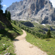 Sassolungo - Val Gardena — Stock Photo #6145289