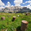 Royalty-Free Stock Photo: Sella mountain - Val Gardena