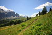 Val Gardena - Dolomites — Stock Photo