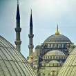 Blue Mosque from hagia sophia 02 - Stock Photo