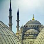 Blue Mosque from hagia sophia 02 — Stock Photo #5832103