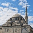 Atik Ali Pasha Mosque 02 — Stock Photo