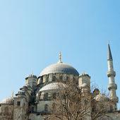 мечеть ени cammii 02 — Стоковое фото