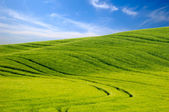 Green hill and blue sky — Stock Photo