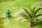 Man working in garden — Stock Photo