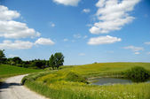 Landscape with lake and path — Stock Photo