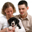 Young couple and dog — Stock Photo